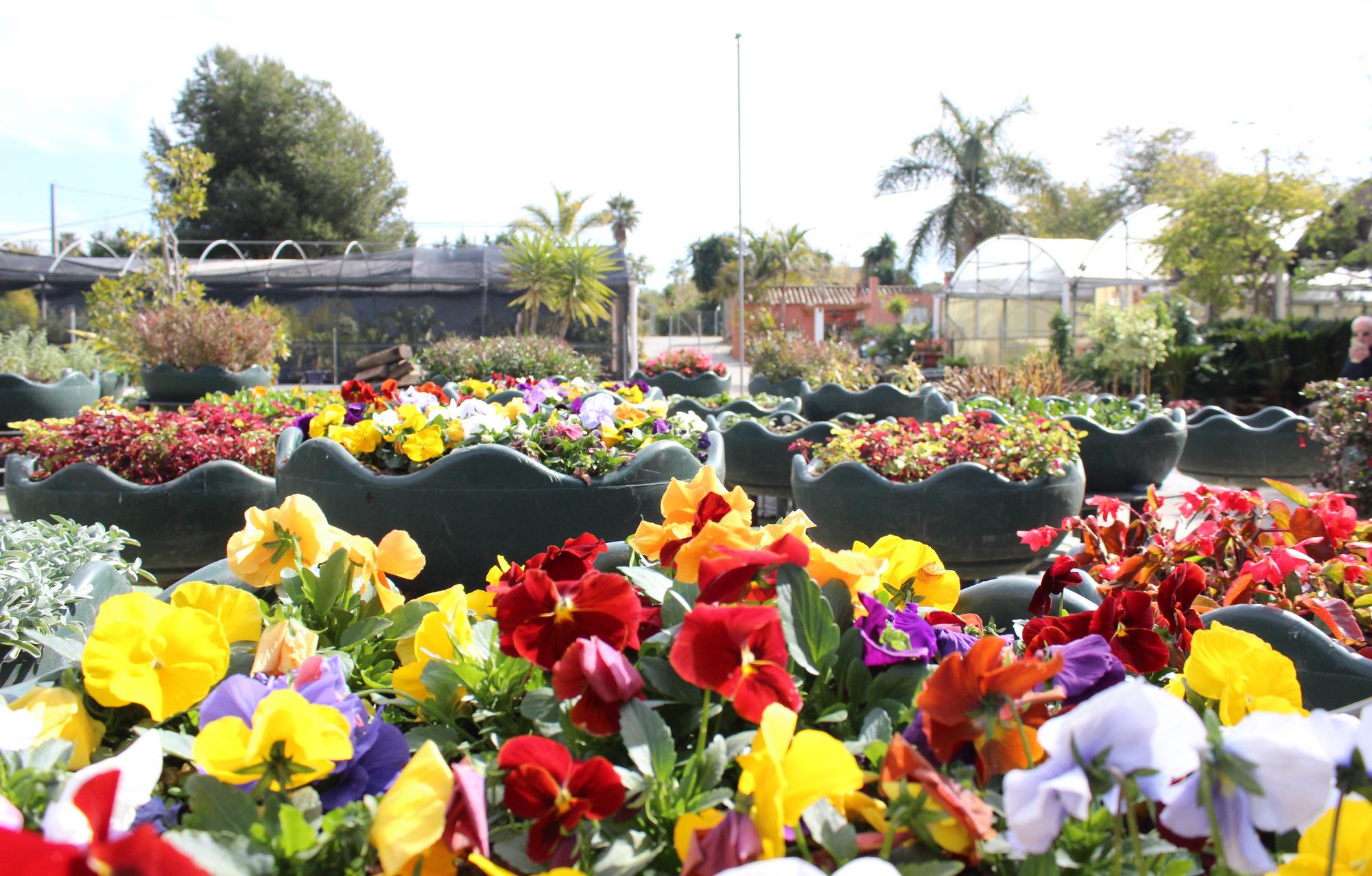 El ayuntamiento refuerza el proyecto estepona jard n de la costa del sol para superar las - El jardin del sol ...