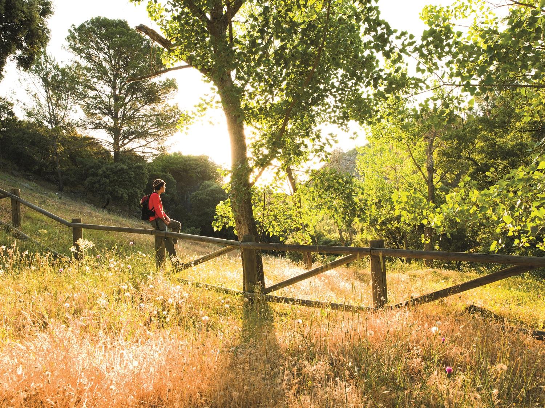 641098fee9d2f Los Sauces Parque Natural de la Sierra de las Nieves  Espacio Natural  Protegido  Yunquera Sierra de la Nieves Provincia de Málaga